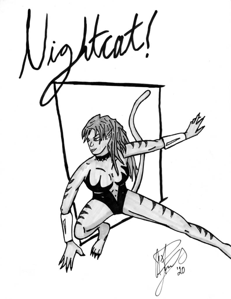 Nightcat created by J.L. MacDonald with art by A.P. Fuchs